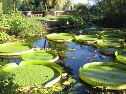 Jardin Botanique Val Rahmeh - Menton