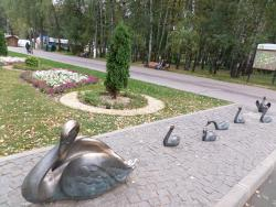 Sculpture Swan Lake