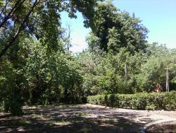 Patrice Lumumba Garden