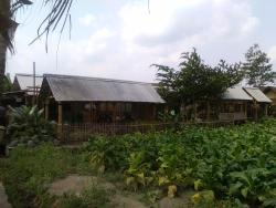 Soto Bathok Mbah Katro