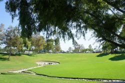 Poinsettia Park