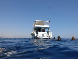 Werner Lau Diving Center Sharm el Sheikh