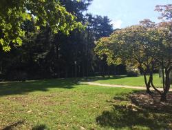 Parco Allea San Luca