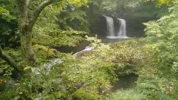 Fujimi Park