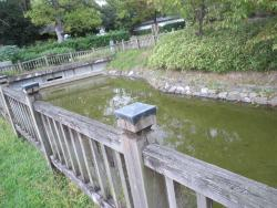 Restored Moat of Kasuga Shrine - Rear