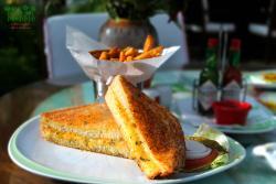 Cheese Melt Sandwich