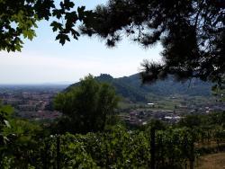 Passeggiata nelle colline di San Benedetto