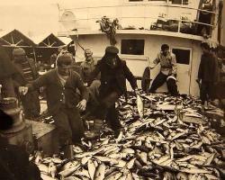 Balık zamanı başlamıştır