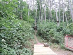 Junglepark - Lanove Centrum