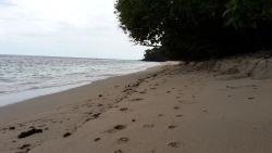 Ena Bhara Beach