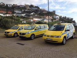 Madeira Travel Taxi and Tours