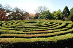 Labirinto Verde