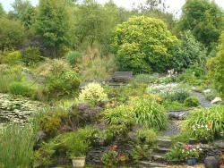 Bwlch y Geuffordd Gardens