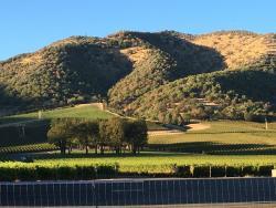 Del Rio Vineyards & Winery