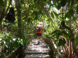 巴厘岛生态游