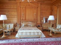 Yanukovich's Residence