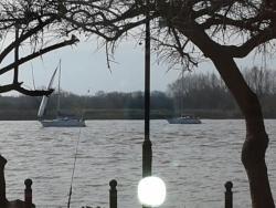 Bife Argentino frente al rio
