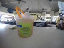 Snorkel's Bar