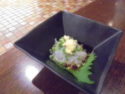 Obanzai Bar Hakata Ryoke Shirasu Kujira