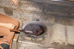 Ubud Sari Coffee Luwak Agrotourism