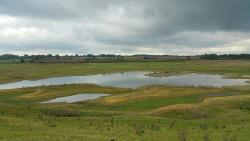 Nosterfield Nature Reserve