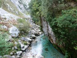 Canal del Texu