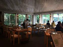 Restaurant Arbre