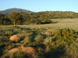 Wright's Field in Alpine