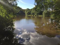 Cliviger Fish Ponds