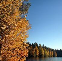 National Park Shhuchye Lake