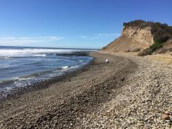 Point Reyes National Seashore- 20 min drive from B&B