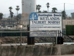 Huntington Beach Wetlands