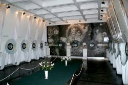 Mykola Syadristy Microminiatures Museum