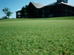 Royalship Sapporo Golf Club
