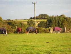 Hallagenna Farm