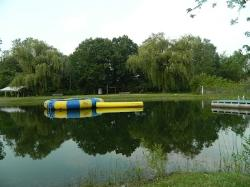 Pond for Swinning FUN