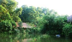 Thai Hai Reserve Area of Ecological Houses-on-stilts Village