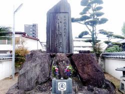 Koyamazuka