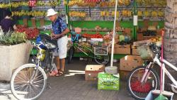 Waikiki Bike Tours and Rentals
