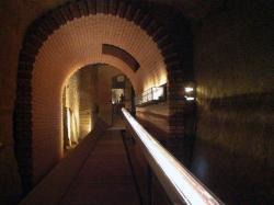 Museo Archeologico di Siena