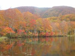 Shiraike Lake