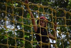 Grange TreeTop Adventure