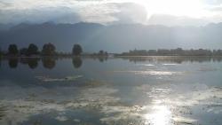 Aussicht von der Vorderfront des Hausbootes, morgens
