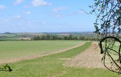 Stockbridge Wildlife and History Walk