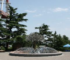 Fountain Tree of Life