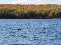 Otsego Lake State Park