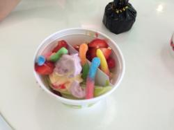 Sweet Frog Panama City Beach
