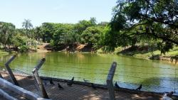 Bosque dos Guarantãs