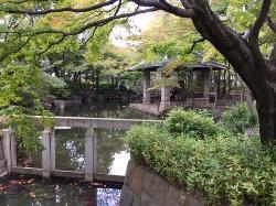 Mabashi Park