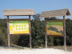 Bois de Espeisses